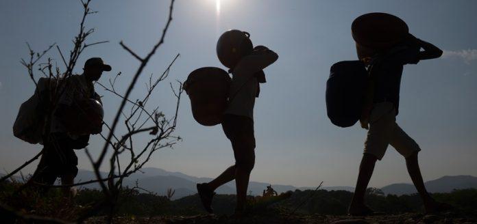 Fundaredes: Más de 500 trochas en la frontera con Colombia financian a la guerrilla FARC y ELN