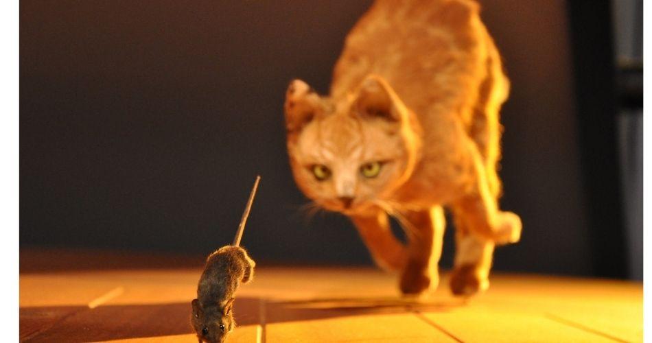 El régimen juega al gato y el ratón con la «oposición» negociadora